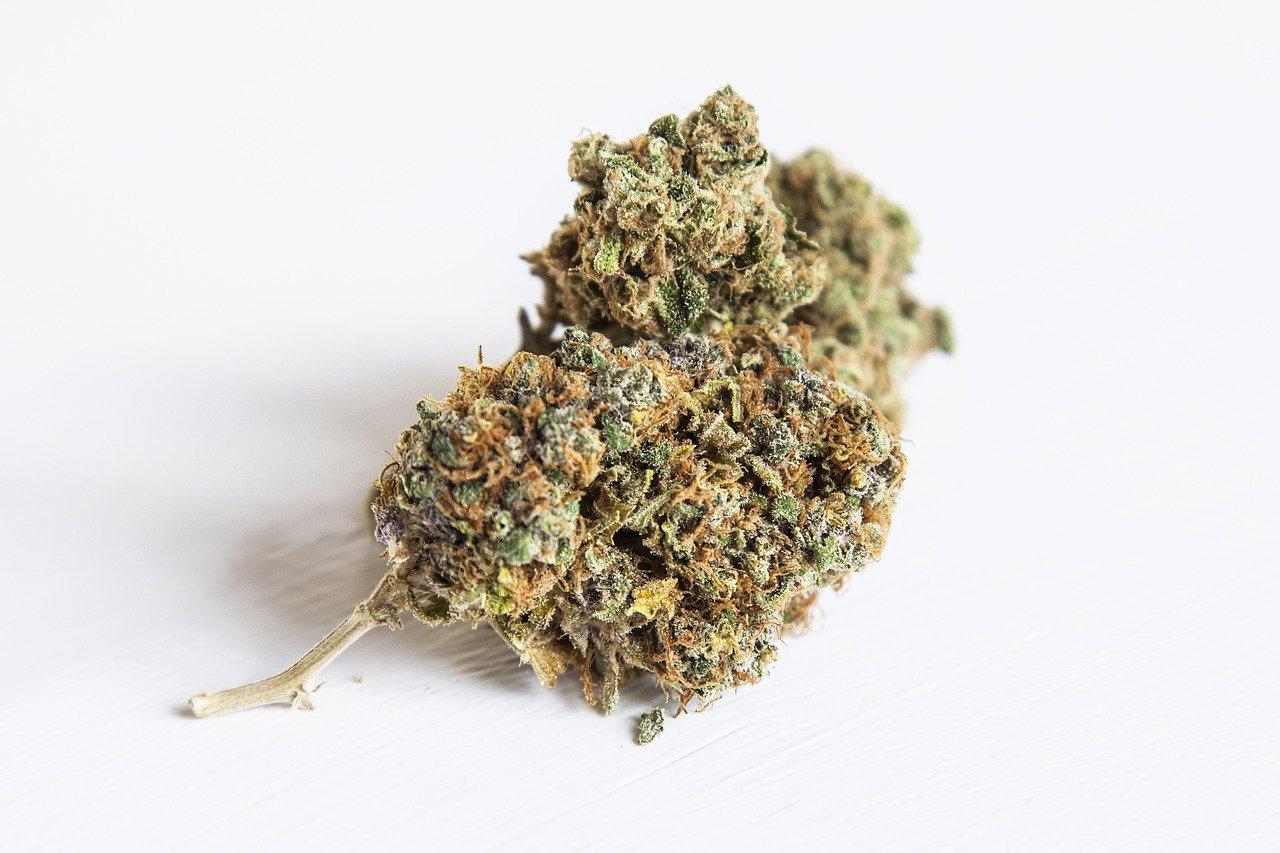 weed, ganga, marijuana